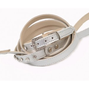 Ice Baby Collar & Lead Set